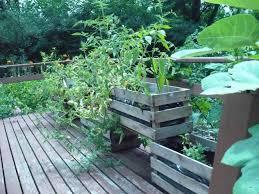 small fence around garden backyard fence ideas