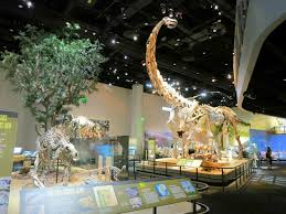 dinosaur at the top picture of perot museum of nature and