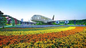 the world u0027s biggest flower garden flourishes in a desert