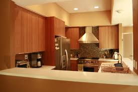 Bamboo Kitchen Cabinets Eco Friendly Cabinets Kitchen Contemporary With Bamboo Cabinets