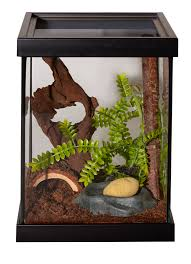 Terrarium Coffee Table by I Would Love To Have A Cage Like This For My Tarantula Pets