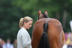 K Hen Aktuell Pferd Sport Zucht Und Sport In Schleswig Holstein Und Hamburg