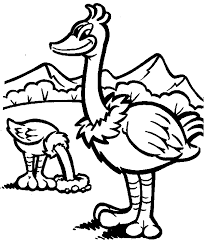 ostrich coloring animals town animals color sheet