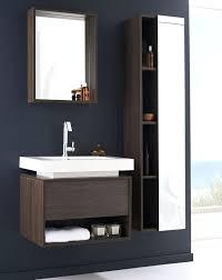 Bathroom Furniture Australia Bamboo Bathroom Furniture Pioneerproduceofnorthpole