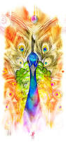 Peacock Decor For Home by Peacock Is Creative Inspiration For Us Get More Photo About Home