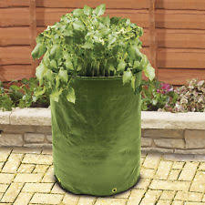 Patio Potato Planters Potato Planter Ebay