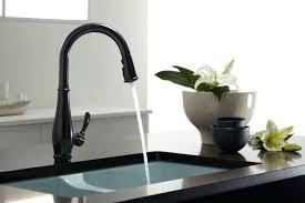 kitchen sink and faucet ideas black kitchen faucets agustinanievas com