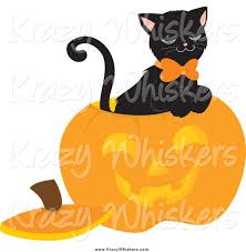 royalty free halloween pumpkin stock animal designs