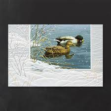 pumpernickel christmas cards winter waters nature duck christmas cards http partyblock