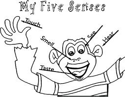 five senses coloring pages medium size of coloring pages