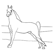 48 free printable horse coloring pages