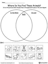 best 25 venn diagram worksheet ideas on pinterest venn diagram