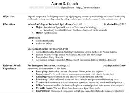 Perfect Resume Template Word Interesting How To Create The Perfect Resume 18 For Your Resume