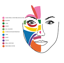 Face Acne Map What The Zit On Your Chin Means U0026 Other Things You Should Know