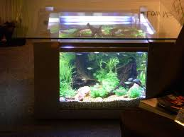 beautiful fish tank coffee table aquarium design with luxurious