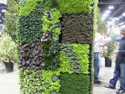 How To Build Vertical Garden - easy to build indoor green wall for home purification overview how