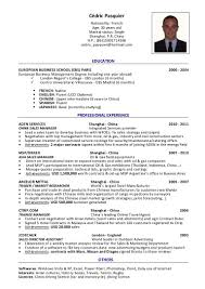 Best Resume Malaysia by Booking Agent Resume Virtren Com