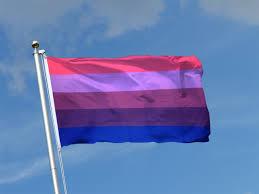 3 X 5 Flags Transgender 3x5 Ft Flag 90x150 Cm Royal Flags