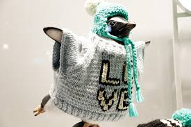john lewis penguins get their knit on with wool u0026 the gang the