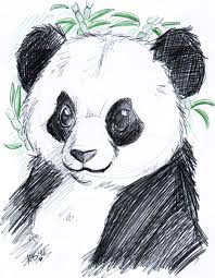 coloring pages how to draw panda face cute sketch bear j8mrcr