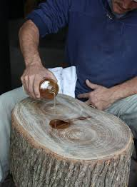 how to make a tree stump table 101 best tree stumps images on pinterest cottage décor ideas and