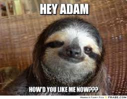 Sloth Jokes Meme - sloth jokes kappit