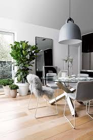 dining room grey pot plants floorboards sept15 home pinterest