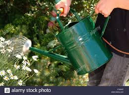 garden watering cans uk home outdoor decoration