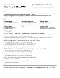 Simple Resume Sample by Tasty Simple Resume Templates Stylish Resume Sample