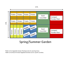 Backyard Vegetable Garden Ideas Spring Or Summer Vegetable Garden Layout Plans And Spacing 4x8 Ft