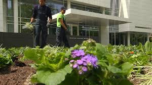 Blumen Baden Baden Gartenamt Baden Baden Pflanzt Emil Nolde Beete Zur Großen