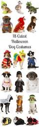 halloween dog toys 18 cutest halloween dog costumes just plum crazy