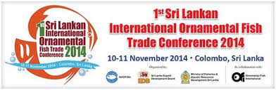 trade conference whatsupcolombo lk
