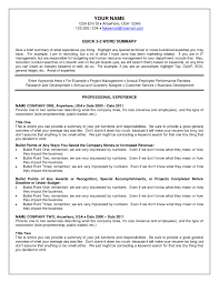 recruiter resume exle sle recruiter resume summary recruiter resume sles design