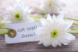 get well soon flowers get well flowers from the house of flowers local auburndale fl