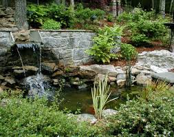 aquascape thebackyardpond amazing pond supplies the backyard