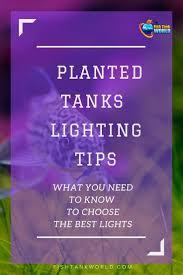 best led light for planted tank best led light for planted tanks in 2018 fish tanks aquariums and