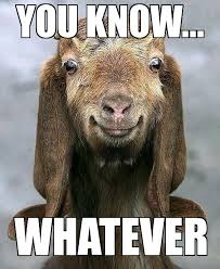 Godfather Meme Generator - happy goat weknowmemes generator
