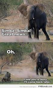 Elephant Meme - 4 simba and elephant bad timing pmslweb