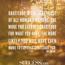 15 thoughtful quotes about gratitude success