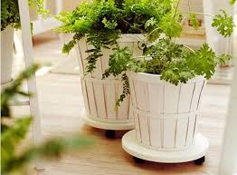 Planters On Wheels by 5 Favorites Rolling Plant Stands Gardenista