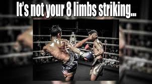 Muay Thai Memes - it s not your 8 limbs striking