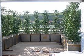 windschutz balkon plexiglas windschutz terrasse plexiglas home design bilder ideen