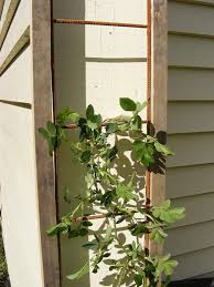 small plant supports how to make garden trellis out of reinforcing mesh handycrowd com