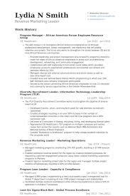 American Resume Example by Mitarbeiter Cv Beispiel Visualcv Lebenslauf Muster Datenbank