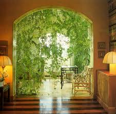 home decoration with plants moon to moon book terence conran decorating wth plants