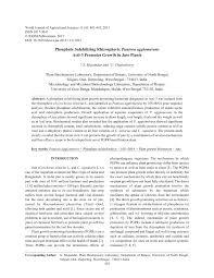 phosphate solubilizing rhizospheric pantoea agglomerans acti 3