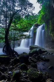 best 10 khao yai national park ideas on pinterest bangkok