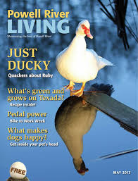 powell river living by sean percy issuu