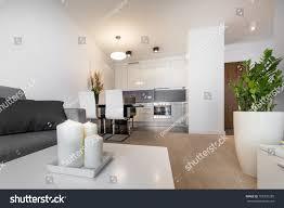 Luxury Livingrooms by Modern Luxury Living Room Interior Design Stock Photo 185270255